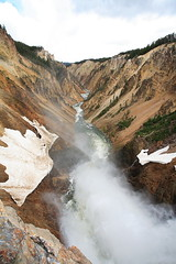 IMG_4652 (Bryan Hsieh) Tags: travel mountain lake snow animal landscape nationalpark 2006 idaho yellowstone wyoming         eos5d