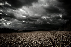 Darkness Has Gone Darker (David.S.L) Tags: sky canada nature clouds landscape darkness accepted1of100 been1of100 d70s nikkor 1870 froca
