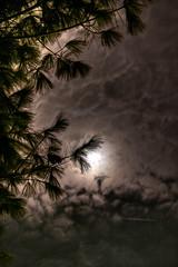Night-Sky (jason_minahan) Tags: autumn moon fall night newjersey nj princeton hdr mercercounty xti