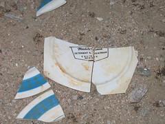 broken plateware (ericajloh) Tags: abandonedhouse bakerca roadtrip2006