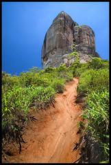 IMG_8266 edit (elliotcarvalho) Tags: brazil mountain brasil landscape trail pedradagavea elliotcarvalho