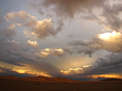 rain over the desert (laeli) Tags: africa cold sahara water rain canon wow lluvia desert flood photojournalism next morocco alluvione marocco faves acqua marruecos pioggia freddo reportage ergchebbi powershots2is top30 ci33 nextphoto