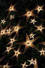 Love The Stars (GenkiGenki) Tags: lighting christmas xmas light tree night canon eos 350d star singapore decoration ornament shoppingmall efs paragon orchardroad 1755mm efs1755mmf28isusm
