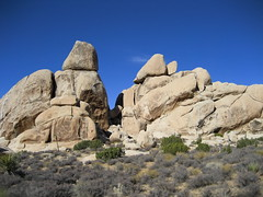 The Rocks - Joshua Tree National Park - by Ruth L