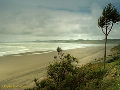 Raglan Bar (Catching Magic) Tags: ocean sea newzealand beach nature landscape olympus waikato e300 tiraudan raglan tasmansea wainuibeach om43rds om3570mm