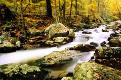 Virginia '02 1-24 (mutbka) Tags: autumn topv111 510fav canon virginia fuji 300 waterblur mountainlake cascade reala elanii