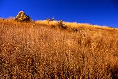 Pecos National Monument (jwoodphoto) Tags: newmexico film canon eos kodak slidefilm e100vs eos3 pecosnationalmonument jwoodphoto n{