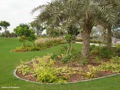 Zabeel Park, Dubai (Dubai-in-Pictures) Tags: park travel green garden dubai outdoor uae middleeast arabia zabeel