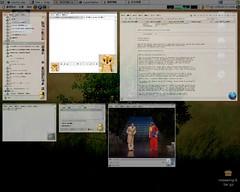 視窗預覽效果 - beryl 0.1.2
