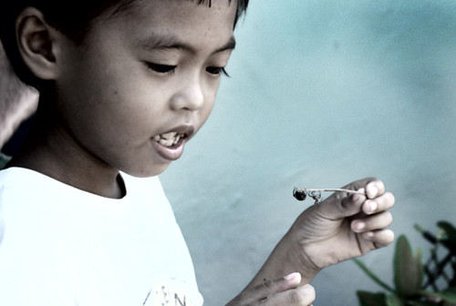 Tambulilid, Ormoc City boy spider playing  Buhay Pinoy Philippines Filipino Pilipino  people pictures photos life Philippinen  菲律宾  菲律賓  필리핀(공화국)