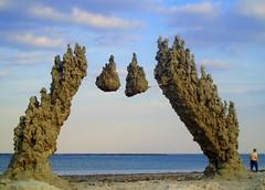 islands in the sky (Revere #1) (sandcastlematt) Tags: sculpture castle beach sand seagull massachusetts sandcastle sandsculpture revere reverebeach bostonist dripcastle interestingness68 beautiferous dripsculpture