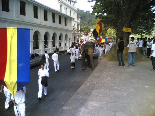 Trinity Parade