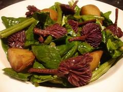 Amethyst Deceiver Mushroom Salad