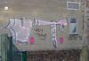 ugly teenz (Antonia Schulz) Tags: urban berlin writing graffiti calle ut ciudad urbana uglyteenz