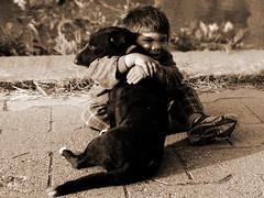 Never Let Me Go (Aleksandra Radonic) Tags: friends portrait bw dog face portraits solitude sweet serbia happiness bestfriends sadface sadeyes boyanddog dogeyes lonelines portraitofadog portraitofaboy portraitofaboyanddog