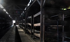 Auschwitz-Birkenau (Pablo Municio) Tags: world camp holocaust memorial war beds ii terror ww2 campo auschwitz genocide hdr victims birkenau exterminio extermination segundaguerramundial camastros