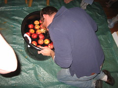 Apple Bobbing (scseth) Tags: halloween pumpkins jackolanterns