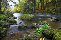 Autumn Afon Llugwy (Stu Worrall Photography) Tags: autumn trees wales forest river flow waterfall long exposure north filter nd betwsycoed creak afon kood llugwy outstandingshots stuworrall stuartworrall