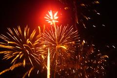 red flower (Mr Ush) Tags: miltonkeynes fireworks guyfawkes november5th