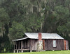 Florida Sharecropper's Shack