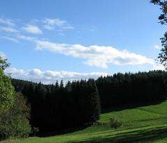 Auvergne. Haute-Loire (YIP2) Tags: trees france auvergne hauteloire