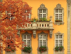 Autumn in Budapest (*labaronesa*) Tags: autumn trees windows building fall yellow architecture europe hungary scrollwork budapest explore amarillo giallo balconies residence flowerboxes labaronesa flickrdiamond