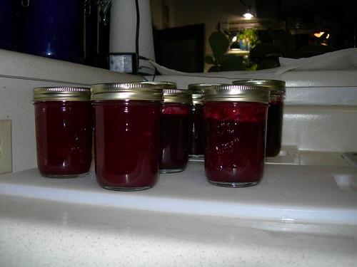 2006-11-21 Craberry Sauce (4)