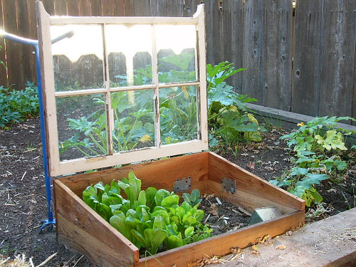 Cold Frames. In Four Season ...