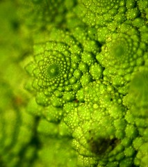 Heres' looking at you (mind the goat) Tags: green vegetable whatisit fibonacci cauliflower fractal romanesco interestingness465 phyllotaxis