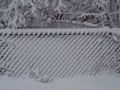 PC010133 (codersquid) Tags: trees winter snow fence driving pattern patterns diagonal tacomaartmuseum