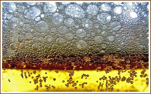 Through the beer foam