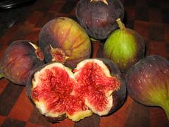 brown turkey figs (lfstewart) Tags: food fig figs foodandbeverage brownturkey