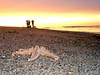 Starfish & Sunset (mattrkeyworth) Tags: sunset sea sun beach coast sand starfish sony lincolnshire p12 dscp12 mattrkeyworth