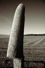 sculpture (duesentrieb) Tags: blackandwhite bw sculpture art monochrome stone germany deutschland europa europe surrealism surreal schwarzweiss rgen kaparkona tumblr