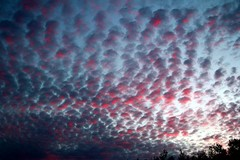 Until tomorrow my friends! (basilly) Tags: ilovenature untouched beautifulclouds unedited outstandingshots iloveclouds theworldthroughmyeyes