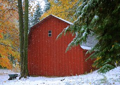 First Snow (snapstill studio) Tags: fall michigan firstsnow petoskey martinmcreynolds abigfave