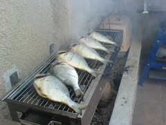 And then there were six (leonapoleon) Tags: fish telaviv bbq grill grilled  florentin          onthefire