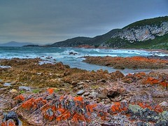 Rocky Cape - HDR (Earlette) Tags: ocean sea colour landscape rocks australia tasmania senery hdr earlette rockycape