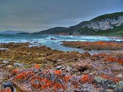 Rocky Cape - HDR (Earlette) Tags: ocean sea colour landscape rocks australia tasmania senery hdr earlette rockycape