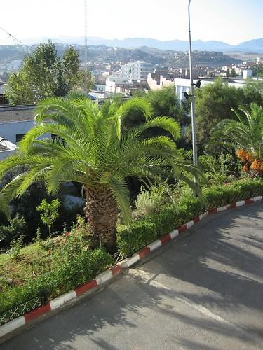 صور ولايات الشرق الجزائري /قالمة قسنطينة باتنة عنابة جيجل الطارف ام بواقي 282708576_0a736b6e51
