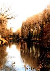 Brenta (fiumeazzurro) Tags: foto 123 natura comments 1on1 veneto scoreme mnfg commentandfave commentscomments commentplease