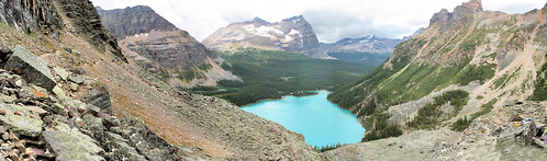 Lake O'Hara from Yukness Ledges