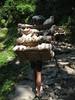 lunch is comming.. (Buzia) Tags: nepal trekking sherpa annapurna ghorepani lpbag