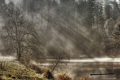 Vezak HDR (Stevacek) Tags: morning sun sunlight mist reflection tree d50 geotagged pond nikon czech rays tamron 90mm bohemia strom hdr rano czechparadise rybnik trosky slunce odraz ceskyraj bohemianparadise mlha tthdr twtme abigfave paprsky vezak geo:lat=5051628062821064 geo:lon=1521085917422345