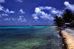 Tuvalu - Funafuti - Beach #2