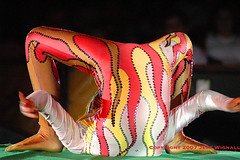 Contortionist #2--Cole Bros Circus (Jeff Wignall) Tags: circus acrobats wignall colebros contorionists gynmists