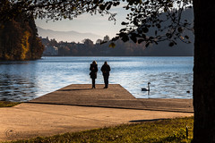 Lago di Bled (Gaia Schiavon - Photogallery) Tags: canon bled lakebled lagodibled slovenia ifeelslovenia landscape colors morning passeggiata lungolago