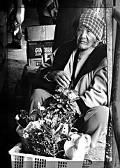 plants for sale (jobarracuda) Tags: flower lumix grandmother lola age baguio oldwoman vendor pinay streetvendor fz50 panasonicfz50 impressedbeauty aplusphoto jobarracuda