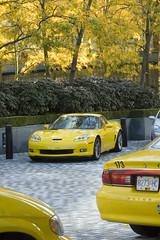 Yellow is the new green (Doug Murray (borderfilms)) Tags: vancouver october d70 2006 wallcentre borderfilms 5592 utatainhalf wwwstockphototipscom wwwroadspillorg