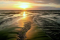 sunset on ripples (go wild - NZ outside) Tags: new light sunset sea west beach beauty creek landscape island golden evening coast north sandbar 2006 zealand nz top20 tone waitarere exploretop20 abigfave interest100